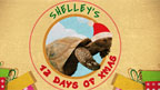 Shelley's 12 Days of Christmas
