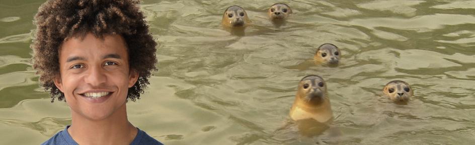 Radzi and some seal pups
