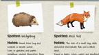 Wildlife Spotter Sheet