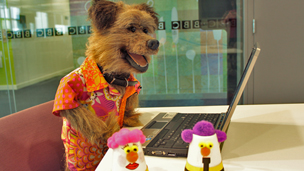 Hacker in CBBC office