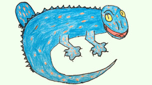 Tokay Gecko drawing