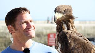 Steve looking at a hawk.