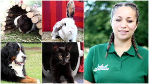 Marie, the pet expert from Pet School, and some pets.