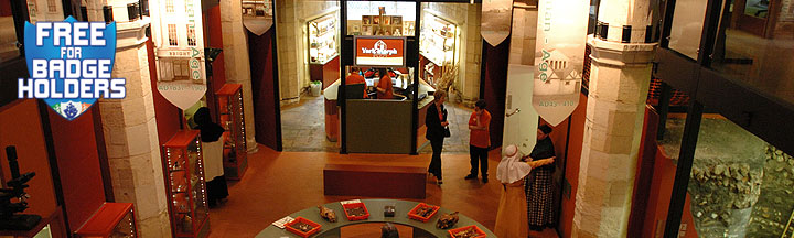 The enterance foyer of 'DIG' containing glass cabinets and other exhibits.