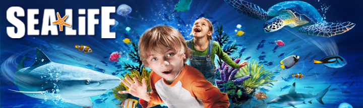 Children looking excited in front of an underwater scene