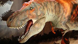 A large T-Rex model.