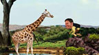 Steve Backshall and a giraffe from Deadly Planet game
