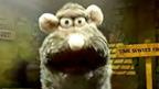 Rattus Rattus' face