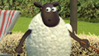 A Championsheep with a wooden spoon.