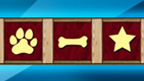 Barkmania code symbols