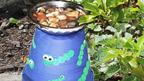 Bird bath in the Blue Peter garden