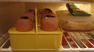 Eggs in the fridge