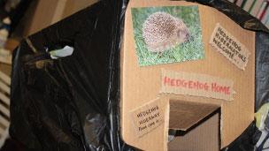 Finished Hedgehog hide away