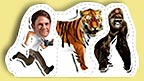 Steve Backshall, Tiger and Gorilla Paper Pals.