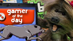 Dodge looking at a computer screen showing the 'Gamer of the Day' logo.
