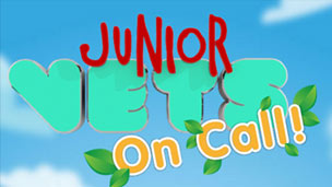 Junior Vets on Call