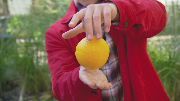 A levitating orange