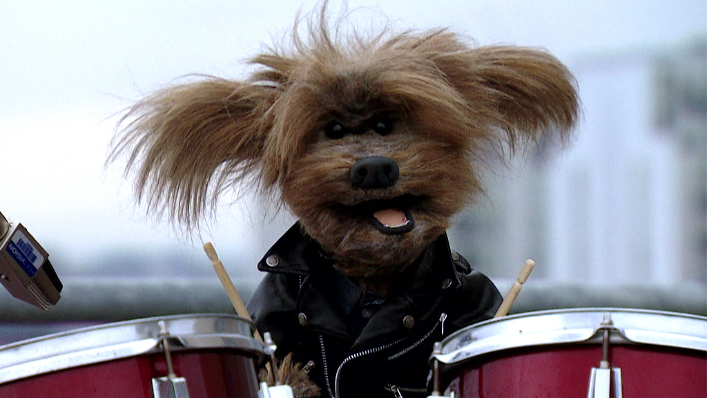 Dodge T Dog in a leather jacket playing the drums.