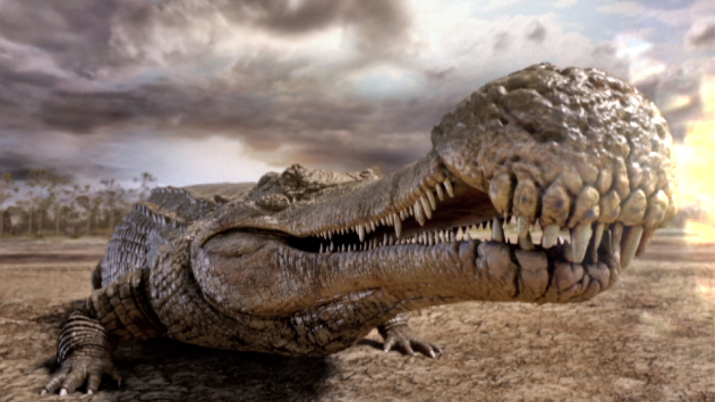 A giant Sarcosuchus