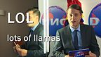 Bob Roberts from DNN. Text reads 'LOL: lots of llamas'.
