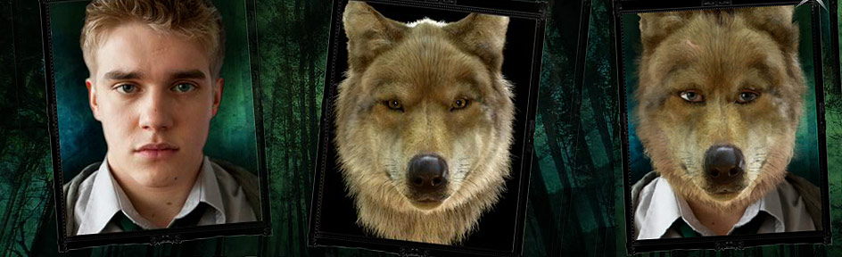 Bobby Lockwood, a plus sign, a wolf, an equals sign and the two other images combined together.