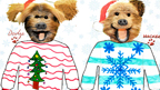 2014 Christmas Jumper designs