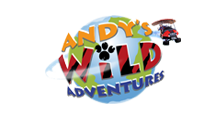 Watch Andy's Wild Adventures