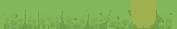 Dinopaws logo.