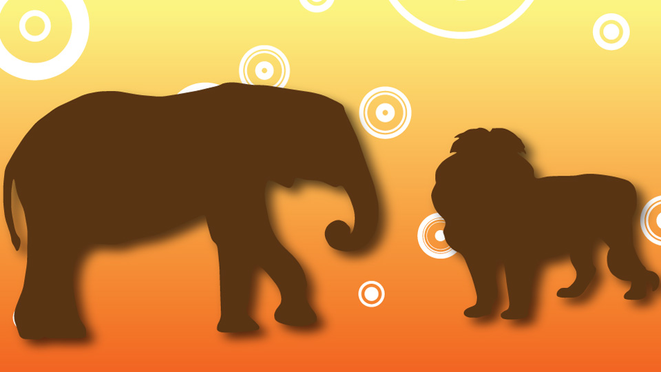 BBC School Radio: Aesop's Fables - The Lion and the Elephant