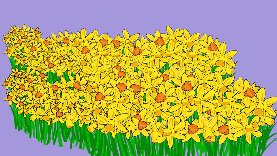 essay on the poem daffodils In this poem the poet speaks to a friend or family member about a spectacular group of daffodils that he recalls seeing when on a walk one day the poet has an exultant tone which is obvious when reading this well-known poem.