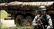 Soldier stands guard in front of a truck loaded with illegal logs in Para