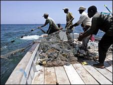خمس الكائنات المائية في بحيرات أفريقيا مهددة بالانقراض 090409113926_fishing226