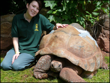 A tartaruga Timmy e a funcionária Sam Lomax, do Zoológico de Paignton (foto: Paignton Zoo Environmental Park)
