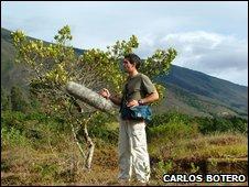 El doctor Carlos Botero