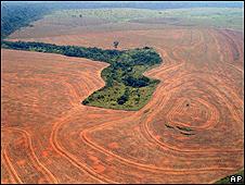 Foto de arquivo mostra área devastada da Amazônia no Pará (AP)