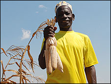 BBC 090716114915_maiz-africano226