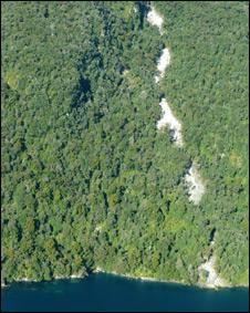 Terremoto provocou deslizamento em áreas inóspitas na Nova Zelândia