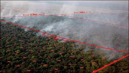 Experimento en el bosque amazónico