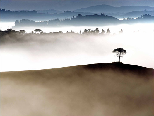 Las mejores fotos ambientales 090915152739_sp_ga_526x6