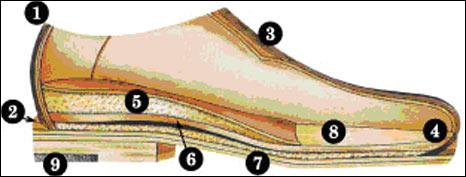 Desenho do sapato especial