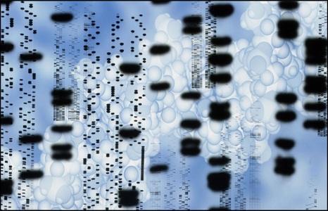 نقشه ژنتیک