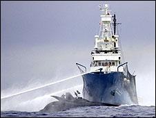 Enfrentamiento entre buque ballenero y activistas