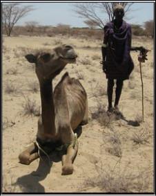 Onta Kenya