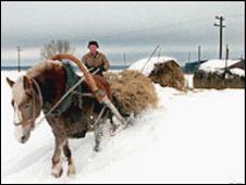Российский крестьянин