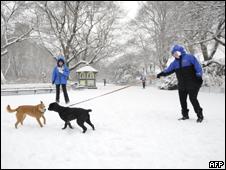 Nieve en el Central Park, Nueva York.