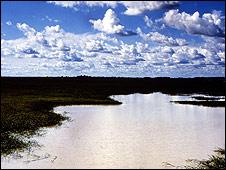Llanos al sur de Venezuela