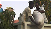 Haitianos moviendo un saco de ayuda humanitaria