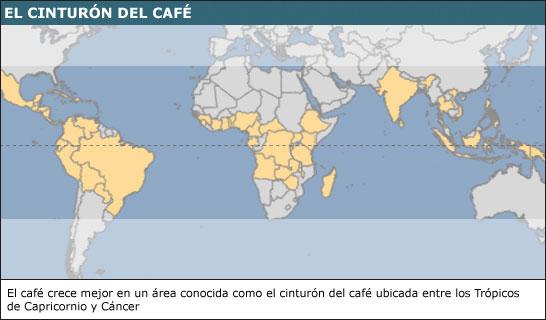 Mapa de la producción de café en el mundo/Fuente: OIC
