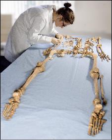 Análise de uma ossada de Dorset (Oxford Archaeology/Dorset County Council/NERC)
