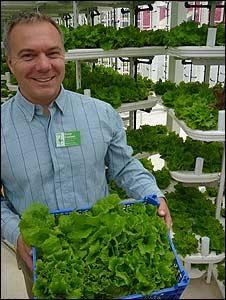 Kevin, en la granja vertical